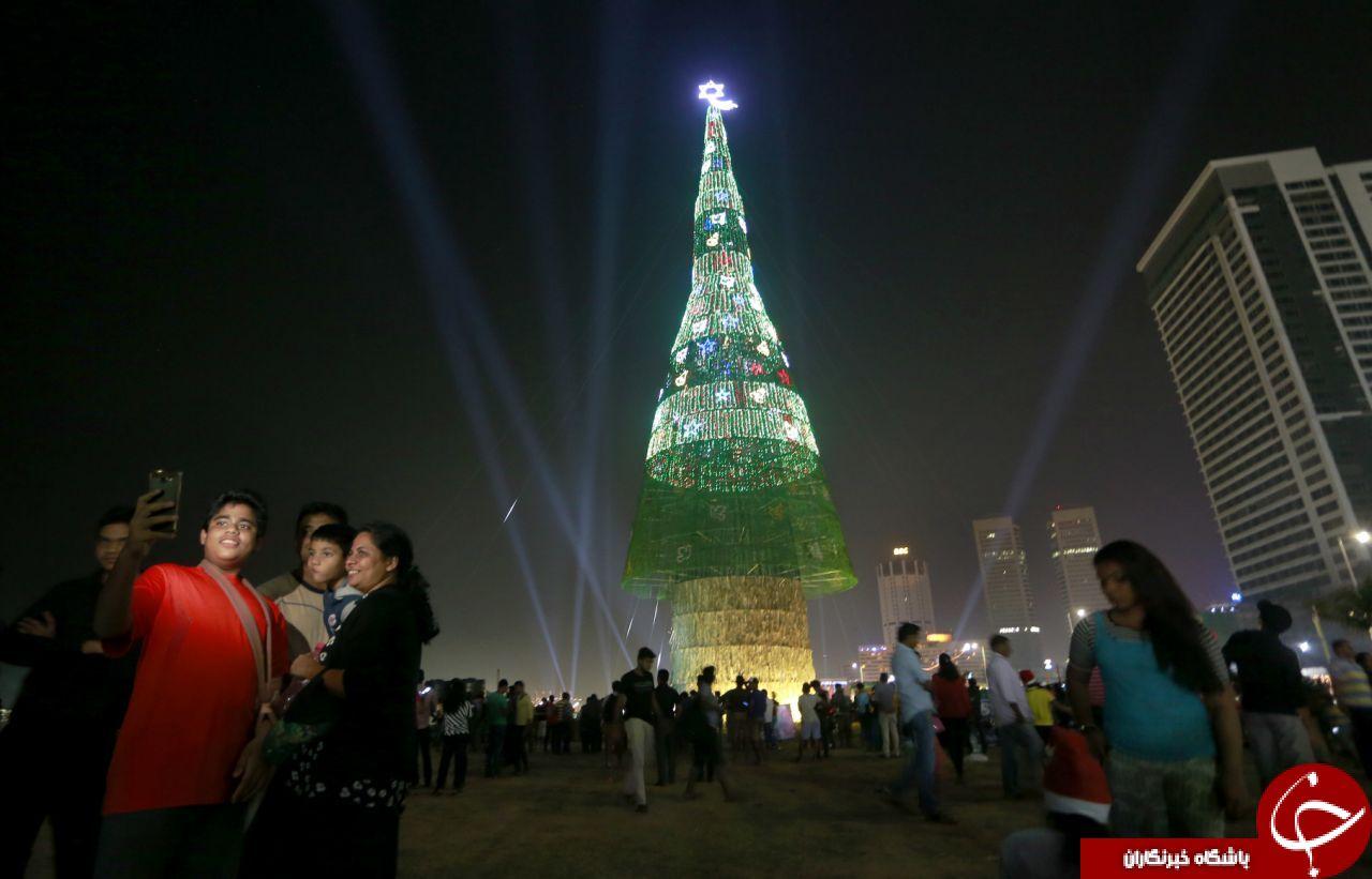 بلندترین درخت کریسمس جهان در سریلانکا رونمایی شد+ تصاویر