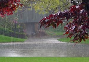 چرا در هنگام باران، دعا مستجاب می شود؟,