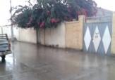 باشگاه خبرنگاران - بارش نخستین باران زمستانی در چابهار + فیلم