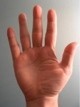 باشگاه خبرنگاران -چرا طول انگشتان افراد از دوران جنین با هم متفاوت است؟