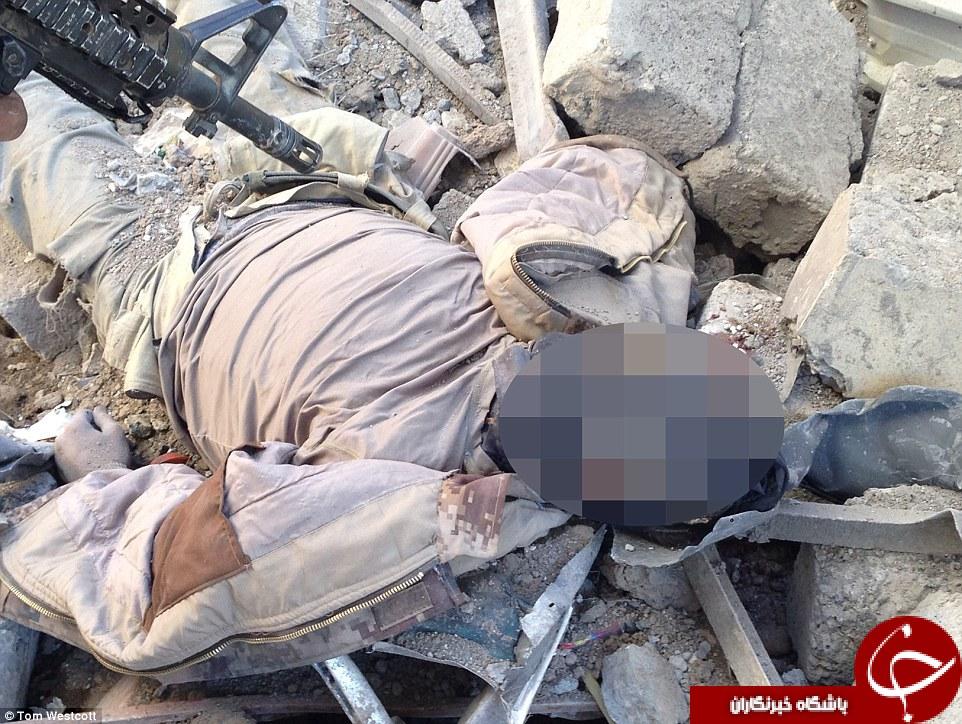 اجساد فاسد داعشیها خوراک سگها و ماکیان ولگرد موصل شد +تصاویر