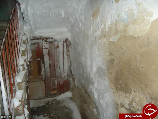 سرمایی که به داخل خانه رخنه کرد +تصاویر