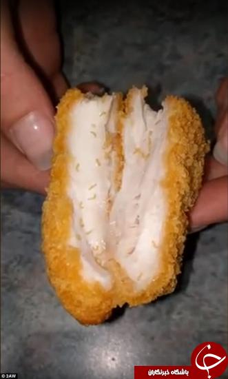 کرمهایی که از داخل مرغ سوخاری بیرون زدند +تصاویر