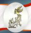 باشگاه خبرنگاران - نامزدهای بخش سودای سیمرغ سی و پنجمین جشنواره فیلم فجر اعلام شد/ «تابستان داغ» نامزد دريافت جايزه در 13 رشته