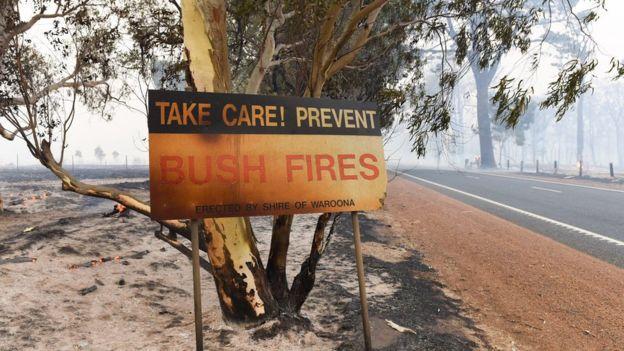 شرق استرالیا طعمه حریق شد