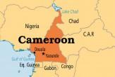 باشگاه خبرنگاران -سقوط بالگردی در کامرون و کشته شدن 4 نظامی