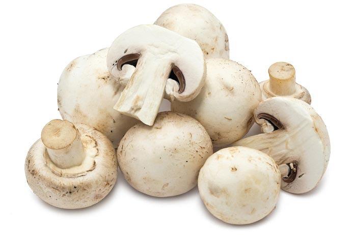قارچ؛ داروخانه طبیعی برای سلامتی بدن