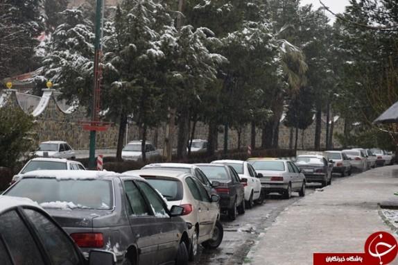 باشگاه خبرنگاران - استقبال مردم لرستان از بارش برف+تصاویر