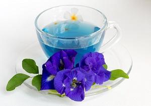 درمان سرطان ریه با این گیاه دارویی