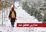 باشگاه خبرنگاران - مدارس برخی از شهرستان های استان خراسان شمالی تعطیل شد