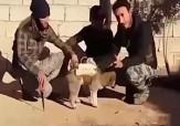 باشگاه خبرنگاران - روش کثیف داعش برای عملیات انتحاری + فیلم