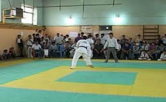 باشگاه خبرنگاران - عنوان ستاره مسابقات کاراته قهرمانی کشور از آن کاراته کای مهابادی