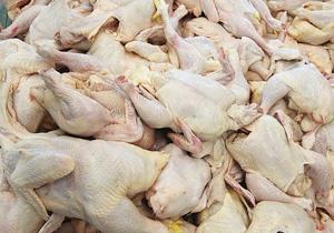 باشگاه خبرنگاران -نرخ مرغ کشتار در بازار