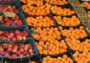 باشگاه خبرنگاران -آخرین قیمت سیب و مرکبات دستچین در بازار
