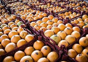 روز/ضرورت کاهش مصرف پرتقال در شب عید/ قیمت پرتقال بی حساب و کتاب در نوروز بالا می رود
