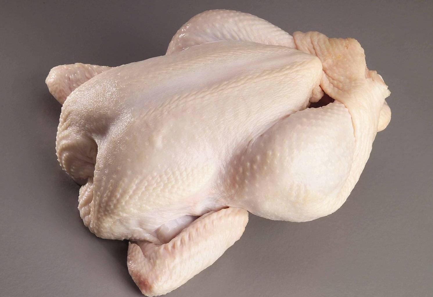 شایعات فضای مجازی، تهدیدی برای امنیت غذایی/ هیچ کجای دنیا مرغ هورمونی تولید نمیشود