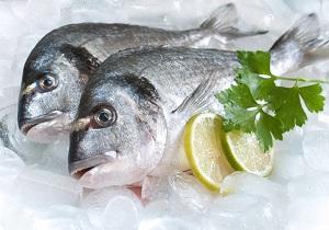 ترفندهایی برای خرید ماهی سالم و تازه