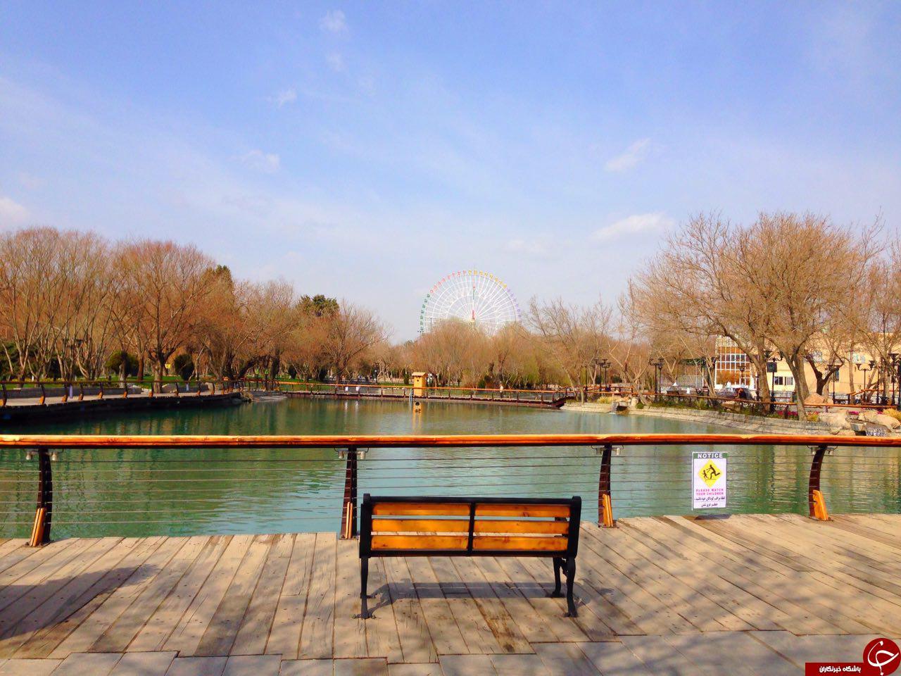 تصاویری زیبا از المانهای نوروزی در مشهد