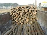 باشگاه خبرنگاران - کشف  9 تن چوب قاچاق در املش