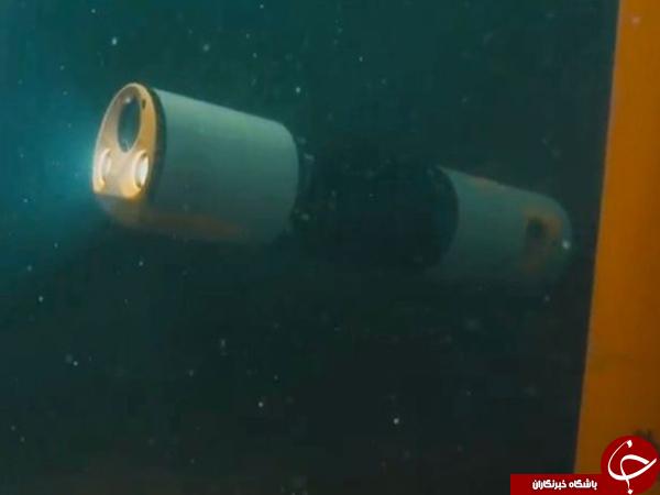مراقبت از لوله های نفتی زیر دریا توسط یک مار