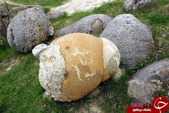 سنگهای عجیبی که رشد میکنند! +تصاویر