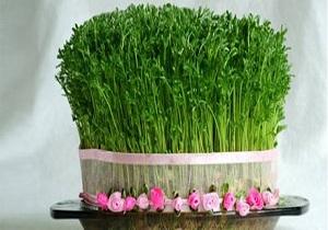دلیل سبز کردن سبزه قبل از سال نو چیست؟