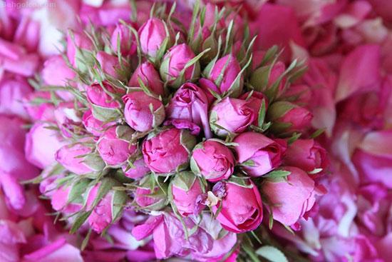 فواید گل سرخ برای پوست و مو
