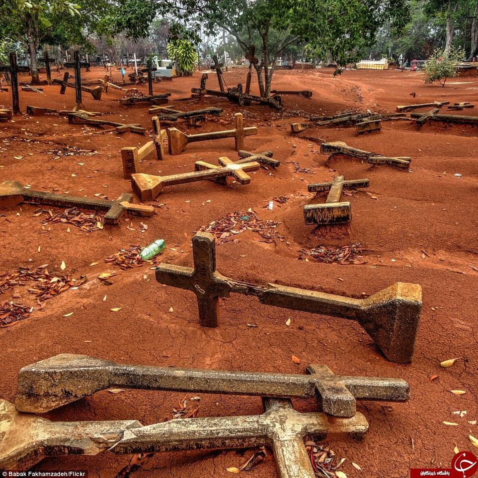 انتشار تصاویر غمانگیزی از شهر آرمانی هنروی فورد در اعماق جنگل آمازون