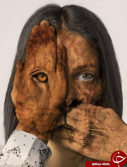 هنرنمایی جالب برای نشان دادن چرخه زندگی + تصاویر