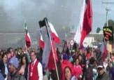 باشگاه خبرنگاران -تظاهرات ماهیگیران شیلیایی بهخاطر آبزیان مرده + فیلم