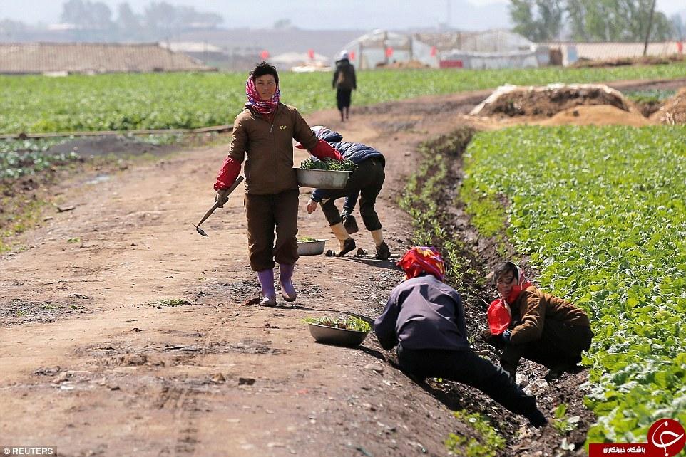 عکس های دیده نشده از مرموزترین کشور دنیا