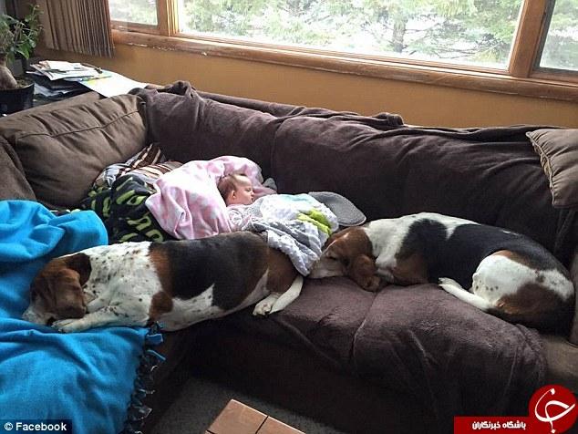 مرگ کودک چهارماهه، گریه سگ ها را هم در آورد + تصاویر