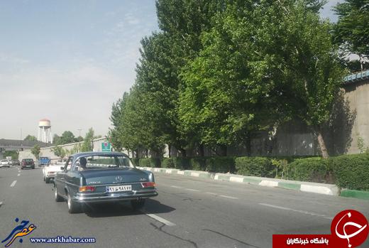 4504158 400 عکس/ پدربزرگهای بنز در خیابانهای تهران