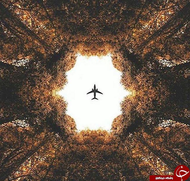 تصاویر برتر نشنال جئوگرافیک + 8 عکس