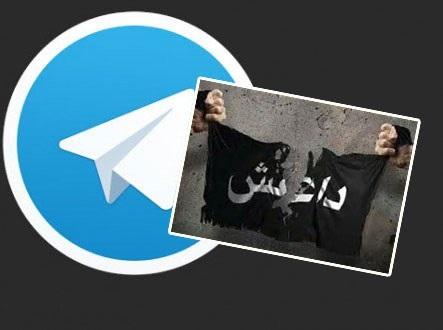تلگرام، نرم افزار محبوب داعش