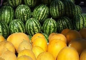 ممنوعیت صادرات هندوانه و خربزه به صورت فله ای