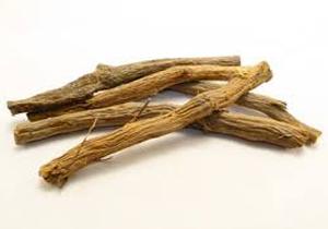 گیاه معروف برای درمان زخم معده