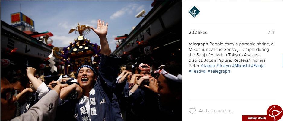 تصاویر برتر اینستاگرام از نگاه تلگراف