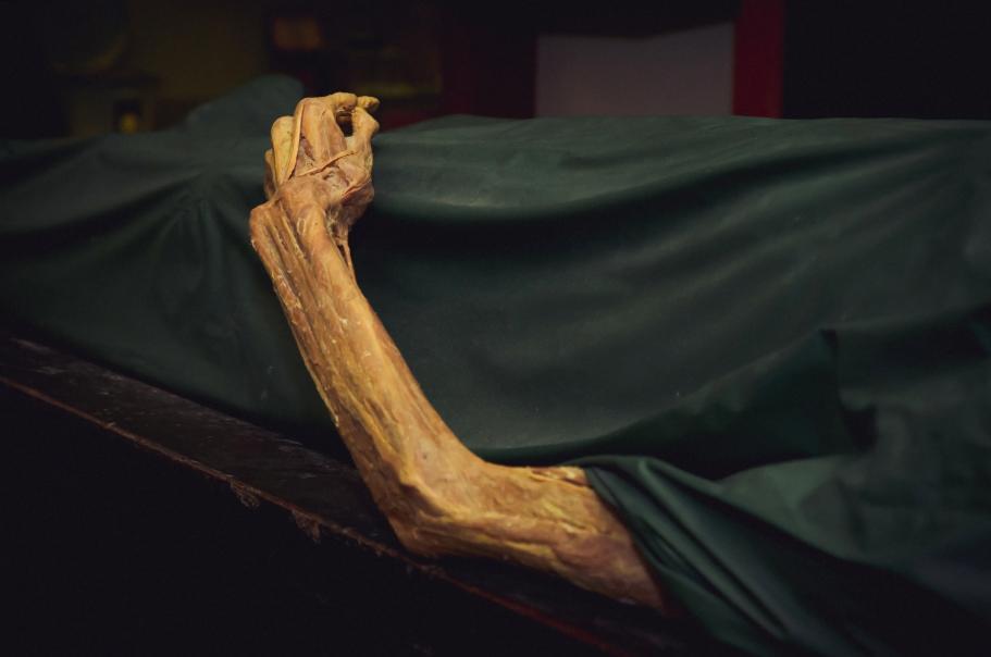 زمان مرگ چه حسی به انسان ها دست می دهد؟