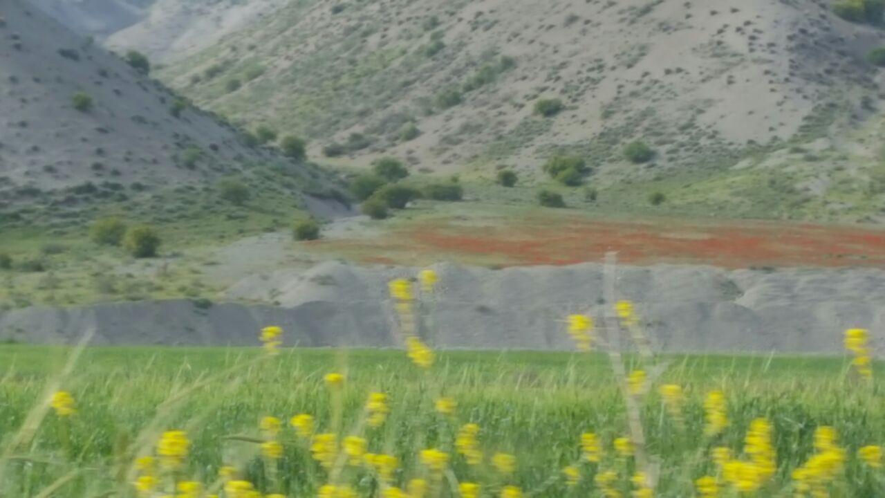 طبیعت چشمنواز روستای سنجد + تصاویر