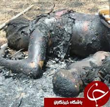 زنده سوزی 4 نفر در آتش خشم بوکوحرام؛ حمله وحشیانه تروریست ها به جنوب نیجر+تصاویر(18+)