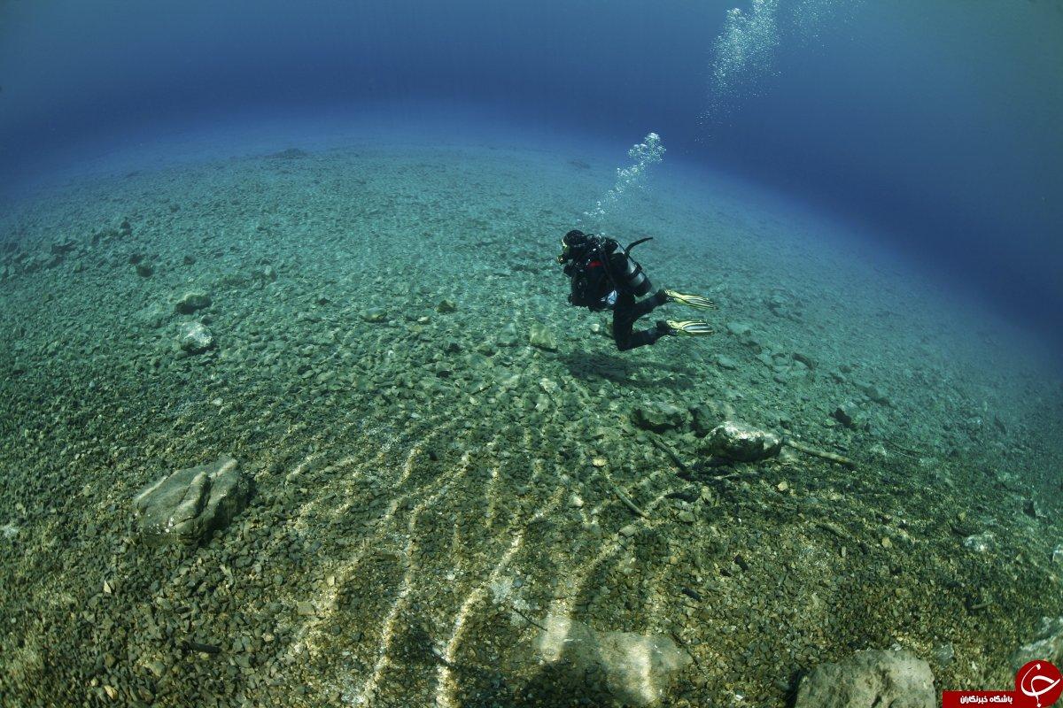 دنیای زیر آب+ تصاویر