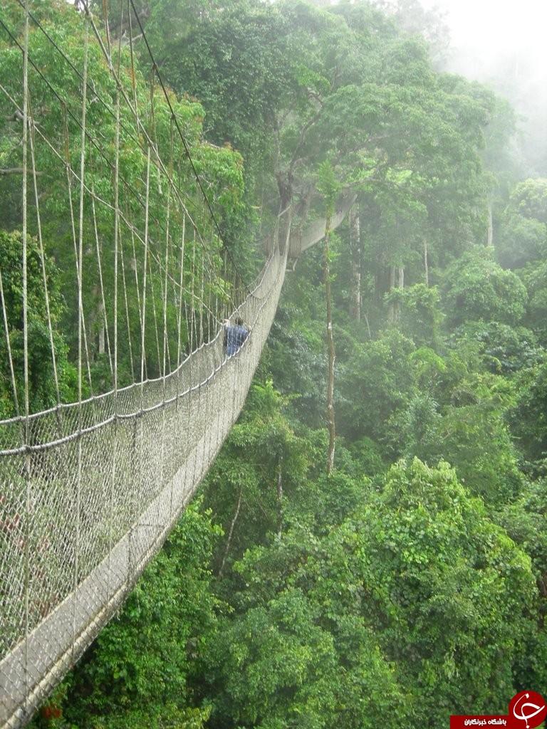 عکس های دلهره آورترین پل های جهان///////درحال کار