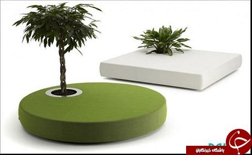 اتونشر//عکس/مبلمانی که «گیاه» بر روی خود دارد!