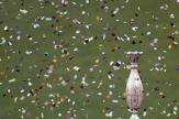 باشگاه خبرنگاران - فیلم حواشی فینال جام حذفی - بخش اول
