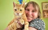 باشگاه خبرنگاران - آیا این پیرترین گربه جهان است؟+ تصاویر