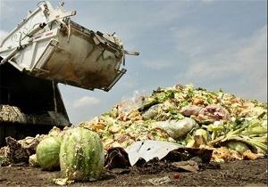 آمار تکاندهنده فائو از اسراف غذا در ایران/ غذای ۱۵میلیون نفر دورریز میشود