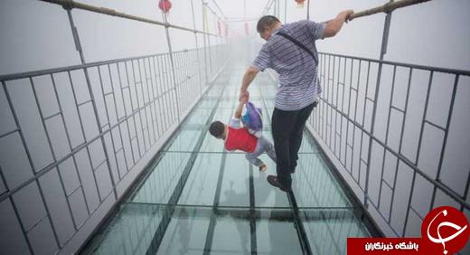 درازترین پل شیشه ای جهان ساخته شد +عکس