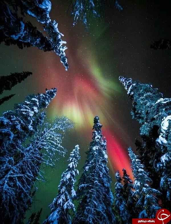 شفق قطبی در آلاسکا +تصاویر