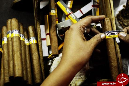 نیوزویک: سیگار برگ مورد علاقه کاسترو چطور دنیا را فتح کرد؟+تصاویر